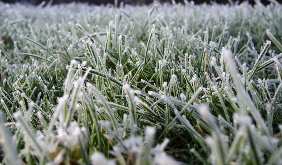 ВЧелябинской области похолодает доминус 6 градусов