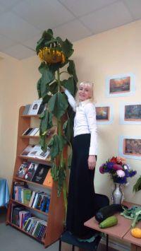 В Новой Пристани - подсолнух до потолка