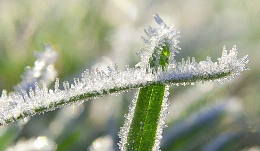 Лето отменяется: ввыходные наЮжном Урале выпадет снег