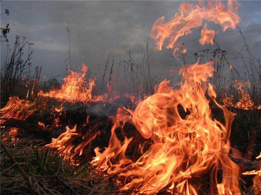 Вовсей Челябинской области ввели противопожарный режим